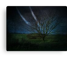 Tree@Night Canvas Print