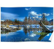 Morning on the Beaver Ponds Poster
