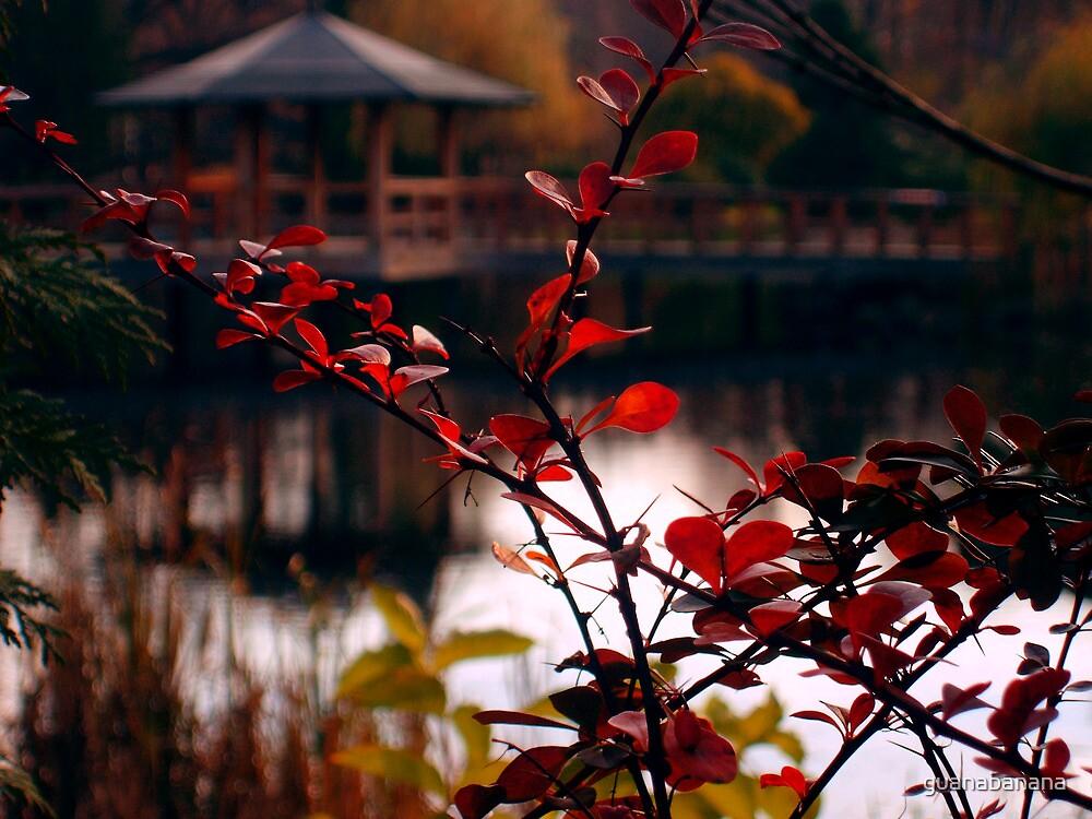 Japanese garden by guanabanana