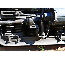 Train Springs Photographic Print