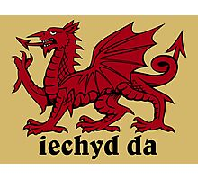 Welsh Dragon Photographic Print