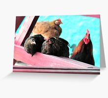 The Roost Greeting Card