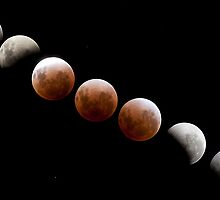 Lunar Eclipse  by jordancantelo