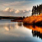 Alwen Reservoir: Take 2 by David J Knight