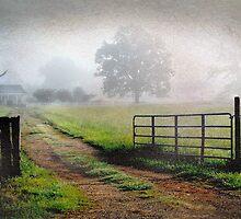 Open Gate by Patito49