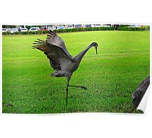 Sandhill Crane Flapping Wings Poster