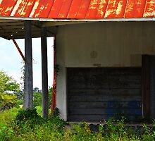 Garage Door by joevoz