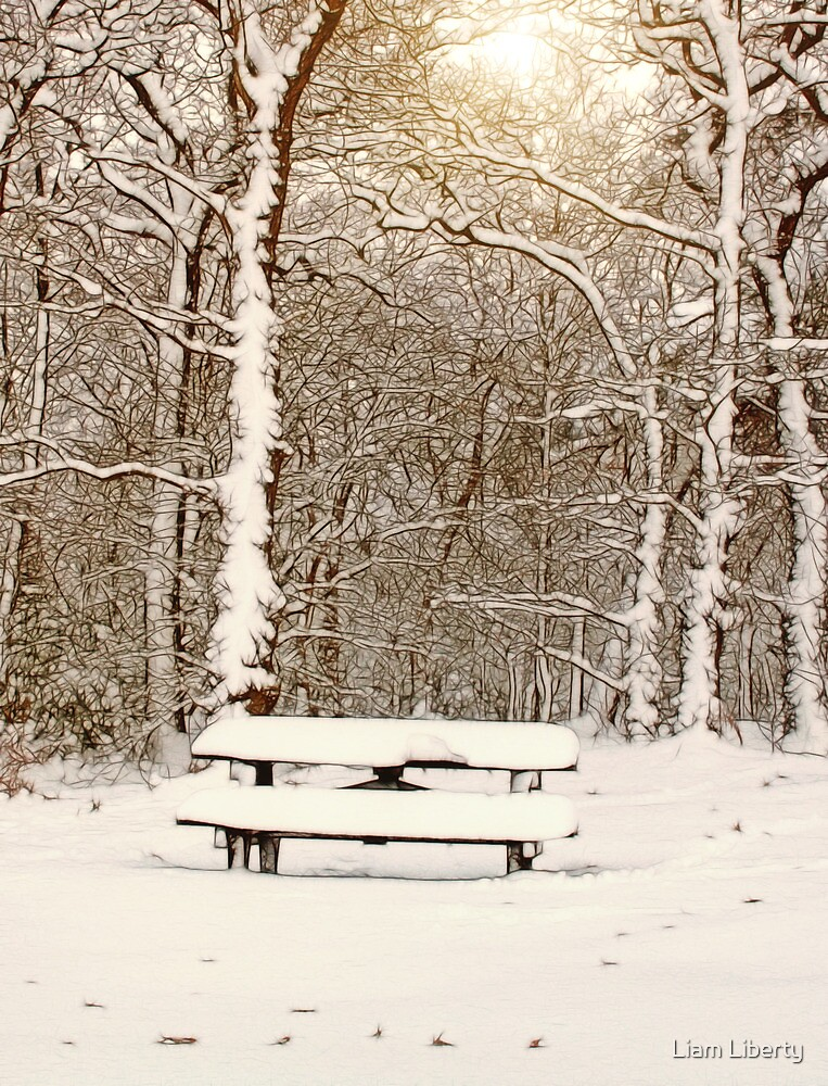 Snow Covered Bench in Ruff Wood by Liam Liberty
