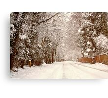 Snow - Ruff Lane Canvas Print