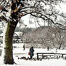 Coronation Park Ormskirk by Liam Liberty