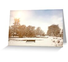 Coronation Park Lake - Snowy Ormskirk Greeting Card