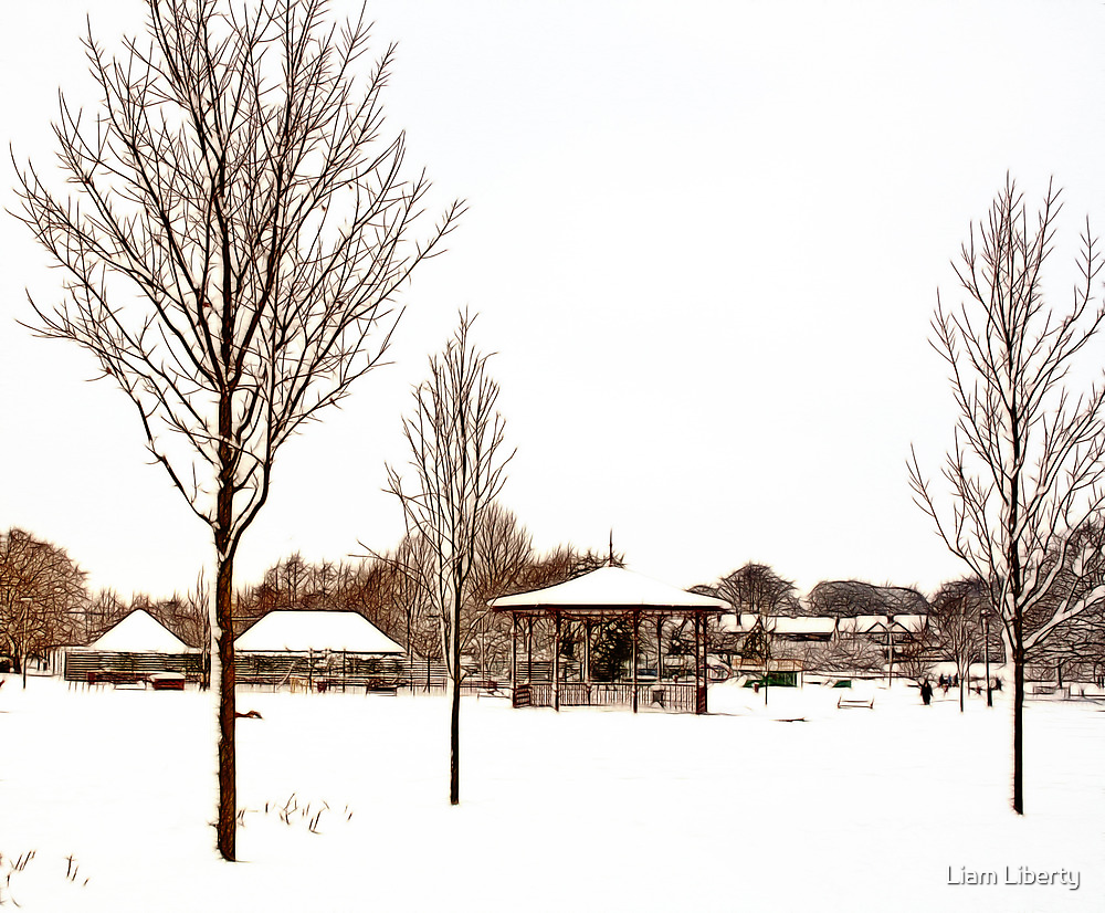 Snow - Coronation Park by Liam Liberty