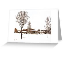 Snow - Coronation Park Greeting Card