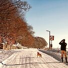 Pause For a Photo - Snowy Ruff Lane by Liam Liberty