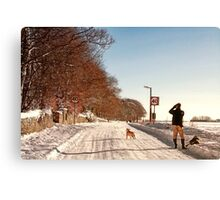Pause For a Photo - Snowy Ruff Lane Canvas Print