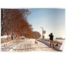 Pause For a Photo - Snowy Ruff Lane Poster