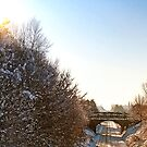 Ormskirk Railway Tracks - Snow Scene by Liam Liberty