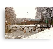 Frozen Coronation Park Lake - Ormskirk Canvas Print