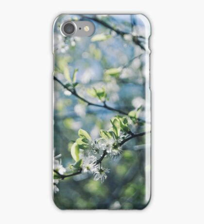 Pretty White Flowers iPhone Case/Skin
