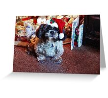 I promise, I've been good! Greeting Card