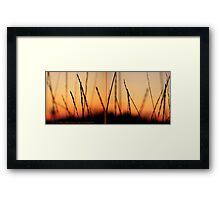 Whispers (Diptych) Framed Print