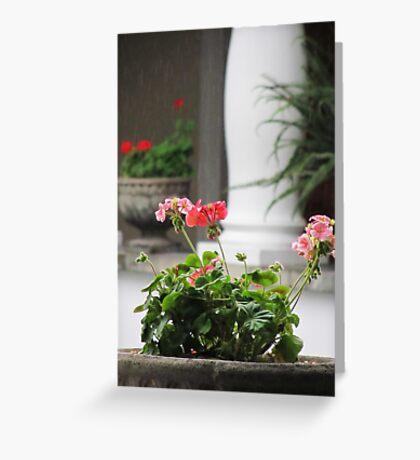 Presidential Flora Greeting Card