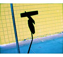 Shadow Stopper Photographic Print
