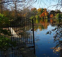 Water Gate by Dietrich Pfeifer