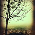 Hazy Shade of Winter by Jeff Clark