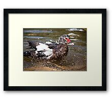 Taking a bath Framed Print