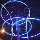 A tree with Christmas lights is not necessarily a Christmas tree! by bubblehex08