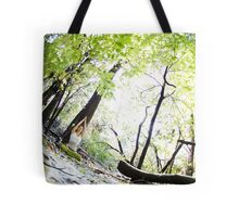 Yogini practicing Yoga in the snow at Central Park, New York Tote Bag