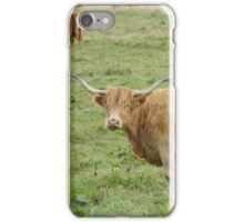 Heilan Coo iPhone Case/Skin