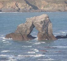 Thurlestone Rock by shadeyade