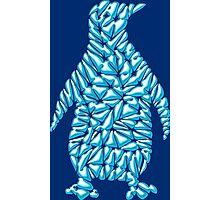 Ice Penguin  Photographic Print