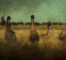 So Why Did the Emu Cross the Road?.... by Wendi Donaldson Laird