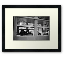 The Bus Driver Framed Print