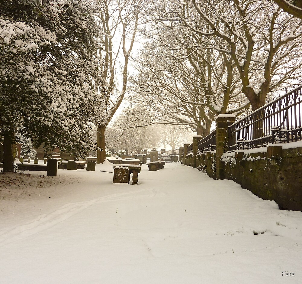Buried Beneath The Snow by Fara