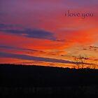 sunset by Veronica Timpanelli
