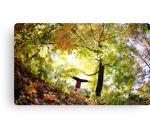 Handstand at Central Park,  Park, New York Canvas Print