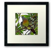MAMA BIRD WITH BABIES Framed Print