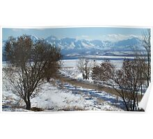 Sunny Weather in Winter Poster