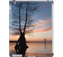 Some enchanted evening iPad Case/Skin