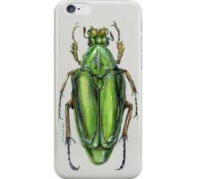 Scarab Beetle iPhone Case/Skin