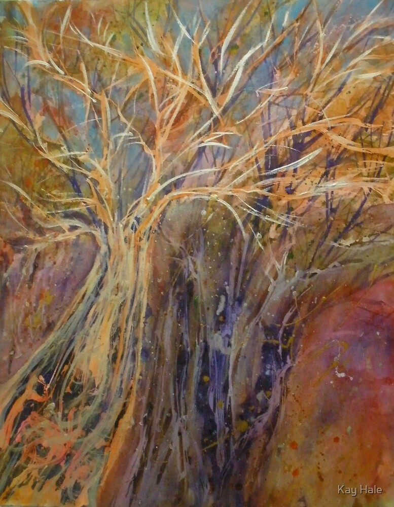 Ancient Trees by Kay Hale