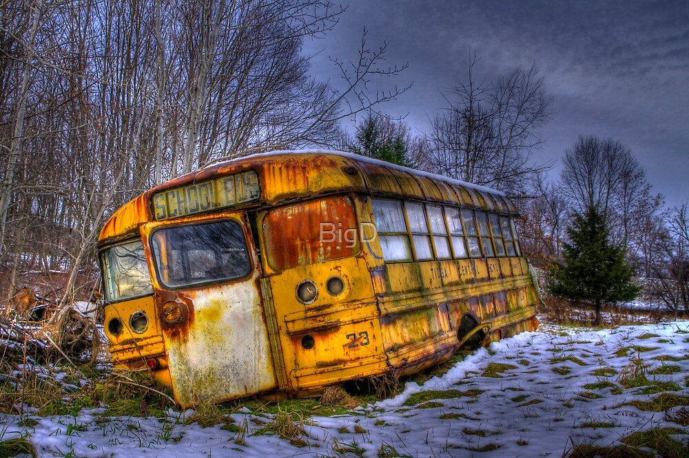 School Bus 23 by BigD