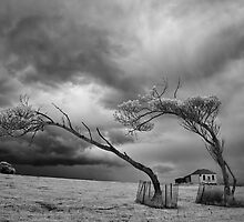 Approaching Storm by Ian Robertson