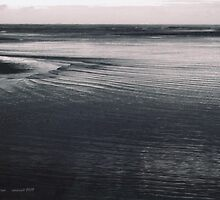 Coast #11 by Margie Bates