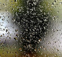 Abstract rain drops at garden window.  by Anton Oparin