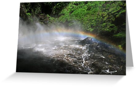 Bushkill waterfall with full spring water and rainbow  by Anton Oparin